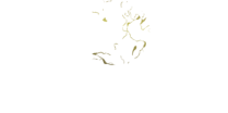 Law Offices of Kathleen K. Dong white logo